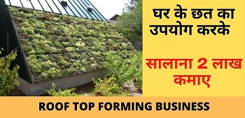 Roof Top Forming Business