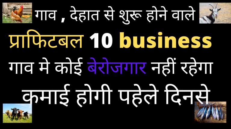 गांव में सबसे ज्यादा चलने वाला बिजनेस | Top 10 Small Business Ideas in Village |